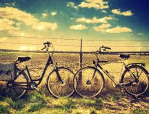I love bicycles - HD romantic meet