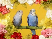 A couple of parrots on a branch between flowers