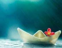 Little paper boat and sweet flower - summer rain