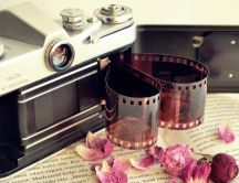 Camera photo and dry pink petals on the book