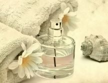 Bottle with perfume water, white flowers and a shell