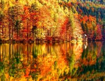 Beautiful Autumn Landscape - Lake and forest