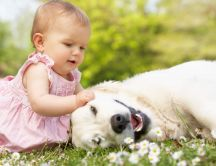 Cute little girl in pink dress plays with a white dog