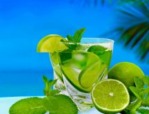 Fresh summer cocktail with lime and mint