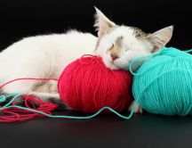 A sweet cat fell asleep on balls of thread
