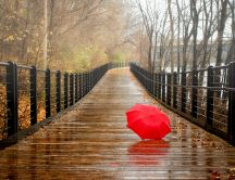 Red umbrella on a wet wood bridge