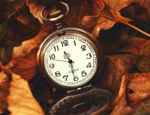 Old pocket watch and autumn leaves