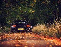 Wonderful black porsche on the road full with autumn leaves