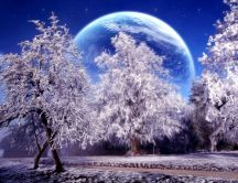 Artistic winter wallpaper - white trees and big moon
