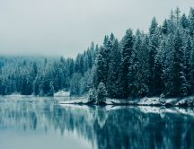 Cold mountain lake - HD winter wallpaper