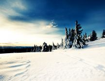 Wonderful winter landscape - white snow and blue sky