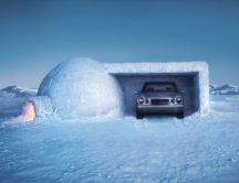 Funny garage from ice - igloos house