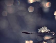Cube of ice in the winter sunlight - macro HD wallpaper