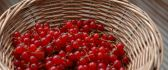 Delicious red currants in a basket - Vitamins