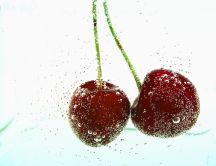 Two cherries in mineral water - bubbles