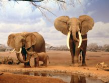 Big wild animals from Africa - The elephants