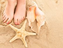 Feet in the hot summer sand and beautiful shells