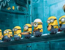Minions eating sandwich in the laboratory - Cartoon time