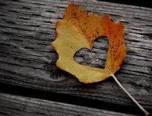 Heart in an Autumn leaf - wonderful HD wallpaper