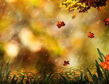 Wonderful rain in the Autumn season - Painting