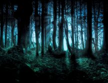 Walk in the dark forest - Happy Halloween night