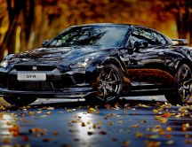 Nissan Skyline GT-R - wonderful black car and Autumn season
