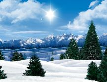 Wonderful winter landscape - HD nature wallpaper