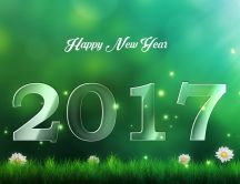 Green wallpaper - Happy New Year 2017