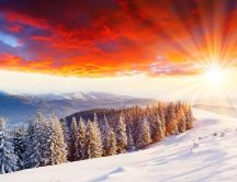 Wonderful golden sun in the cold winter season