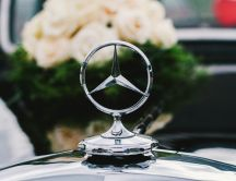 Macro Mercedes logo - Wonderful car and white roses