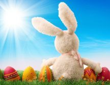 Fluffy rabbit and coloured Easter eggs - Happy Holiday