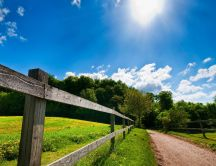 Summer sunny day at the country side - Country road