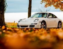 Old white Porsche car and beautiful Autumn leaves