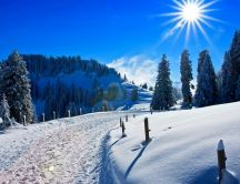 Sunny winter day on the mountain - HD wallpaper