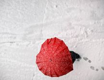 Red umbrella in shape of heart - Love winter