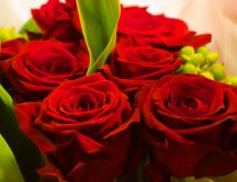 Macro red roses - Happy Valentines Day