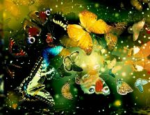 Wonderful butterflies fling - Abstract wallpaper