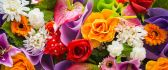 Colorful bouquet of spring flowers - Happy Woman Day