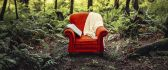 Abstract wallpaper - Red chair in the forest -Sleep and read