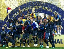 Fifa world cup final 2018 - France football team champion