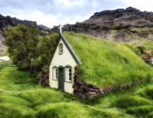 Church with green grass roof -Mountain view wonderful nature