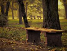 Wooden table in the park - Autumn leaves on the ground