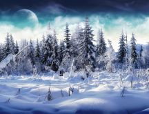 Big moon in a cold winter season - All nature is white