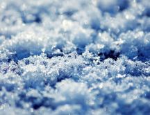 Frozen snow - Professional photo in winter season