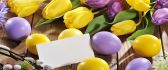 Beautiful Spring Tulip flowers and colored Easter eggs
