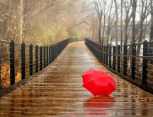 Lost red umbrella on a bridge - Autumn season rainy day