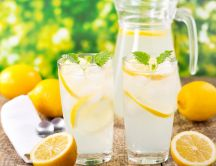 Prepare your delicious lemonade for a fresh day - Lemon Mint