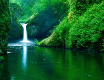 Wonderful white water on a beautiful waterfall -Green nature